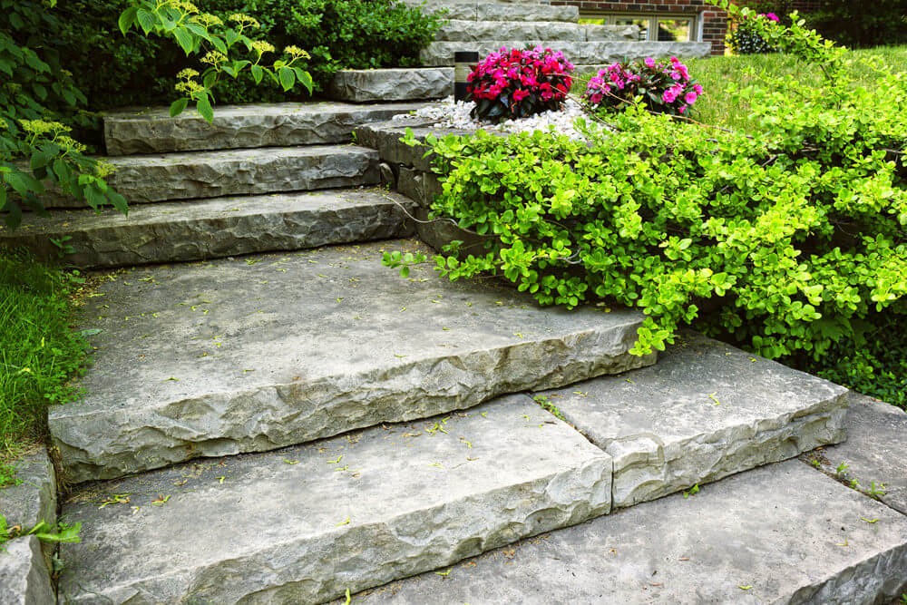 Paving slabs with rugged edges that serve as garden steps are surrounded on all sides by swaths of low lying green shrubs and sprinkling of flowering plants.
