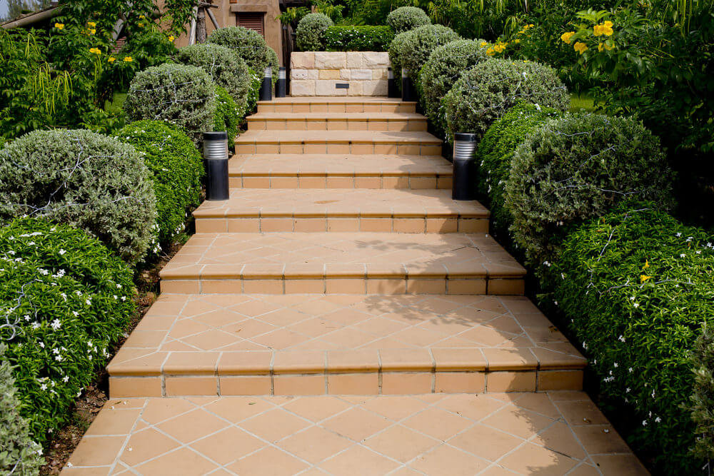 Evergreen shrubs lining up the concrete garden steps make a good ornamental boundary.