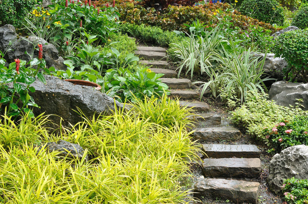 Japanese ornamental grasses and other shrubs are side by side with dark boulders as they make way for the rugged stone garden steps.