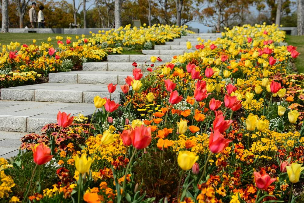 These stone garden steps are conveniently nestled between beds of beautiful tulips and perennial flowers in hues of yellow, orange, pink, and red.