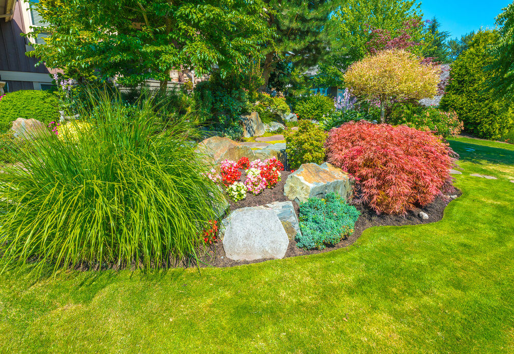 Non-flowering shrubs are also a great colorful ornament for your front yard. Nandina plants and landscape grasses are a good match. Add trees and a few flowers.