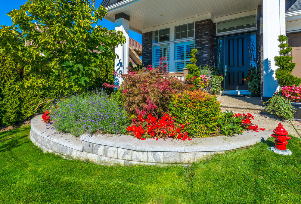 Plants may have outgrown each other yet the rounded brick stone paver edging still looks fabulous as blooms turn out to be a mixture of colors.