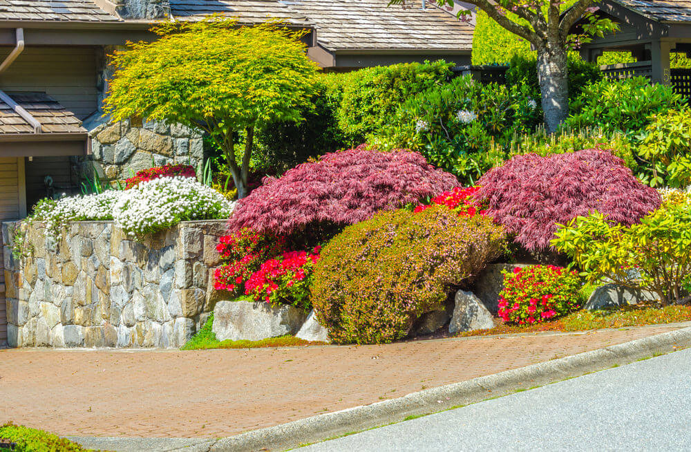 A brick stone pathway and rubble stone flower box grows purple shrubs and other blossoms.