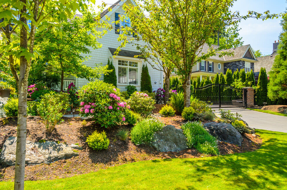 Trees and grasses are the most easy to maintain natural ornaments you can put in your front yard. Add a few large rocks and blossoms to give a simple yet creative design.