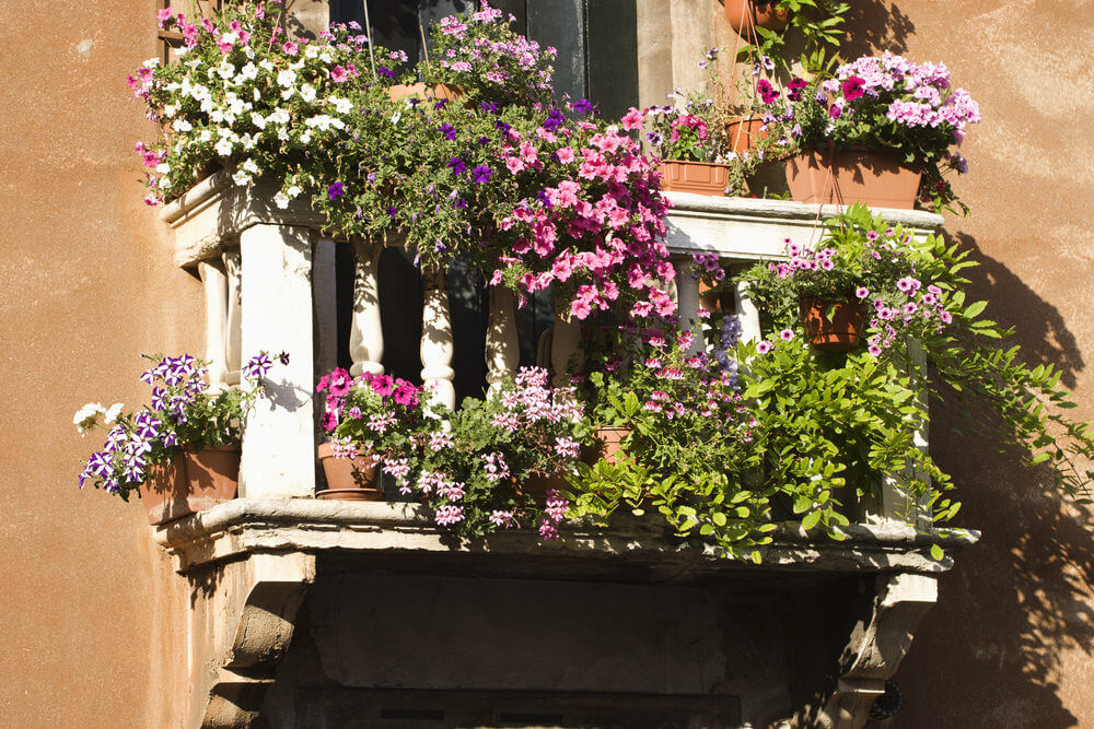 Stunning balcony filled with flower boxes and flowerpots creating a miniature garden in full bloom on a small white balcony.