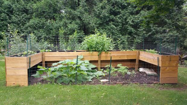 This particular bed combines a raised bed with a traditional garden layout. This option is perfect for larger vegetables like pumpkins, zucchini, tomatoes, and watermelon, while the top is ideal for herbs, flowers, and even onions and peppers. It's a good idea to keep animals out of your garden by putting chicken wire around the perimeter.