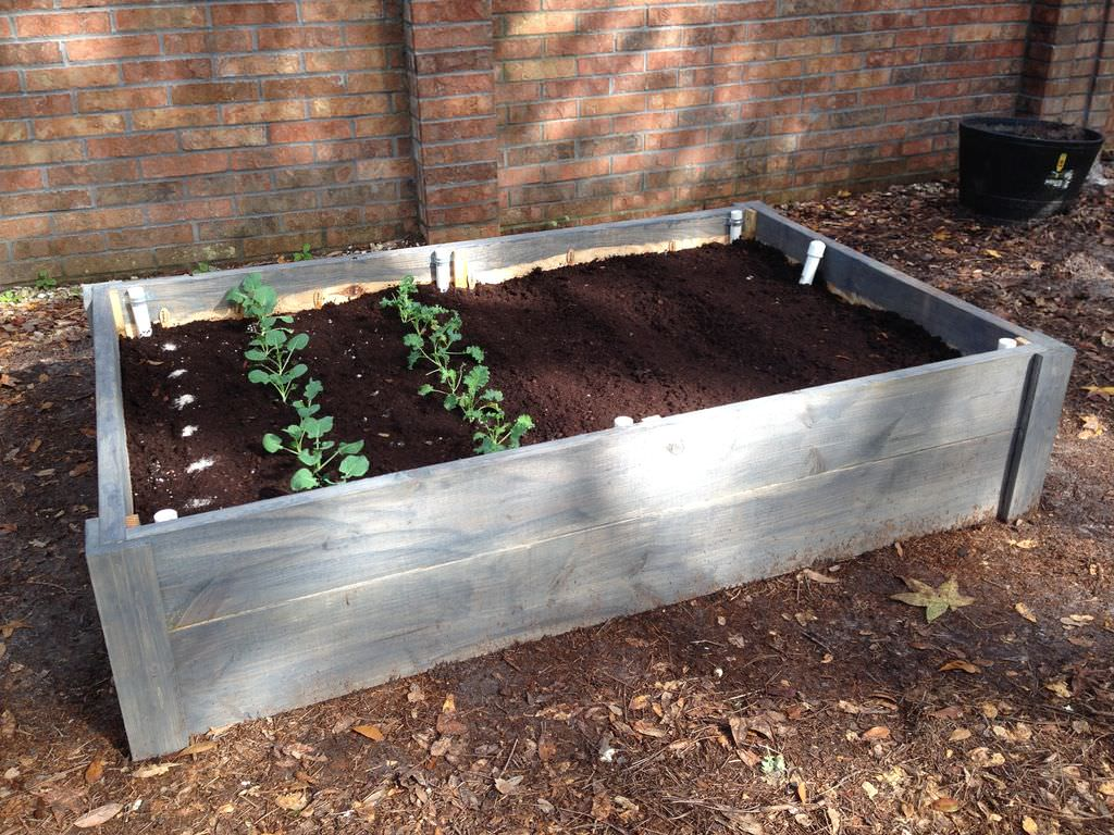 If the ideal location for your bed isn't near a water source, you can try a wicking bed. This type of raised bed essentially waters itself, which is a great option because the water evaporates less, the plants can grow deeper roots, and you actually save water, since it only draws up water when the soil is dry.