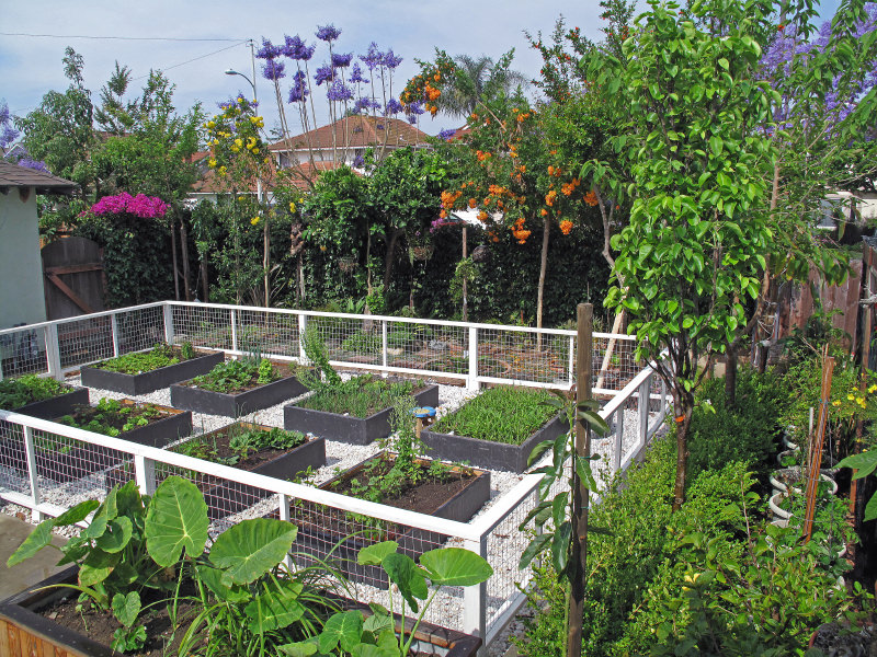 Avid gardeners can appreciate this well-organized lot of garden beds. Each box can house its own vegetable, thus making harvesting and maintenance that much easier. Plus, the fence around the whole garden is ideal for keeping pesky critters out.