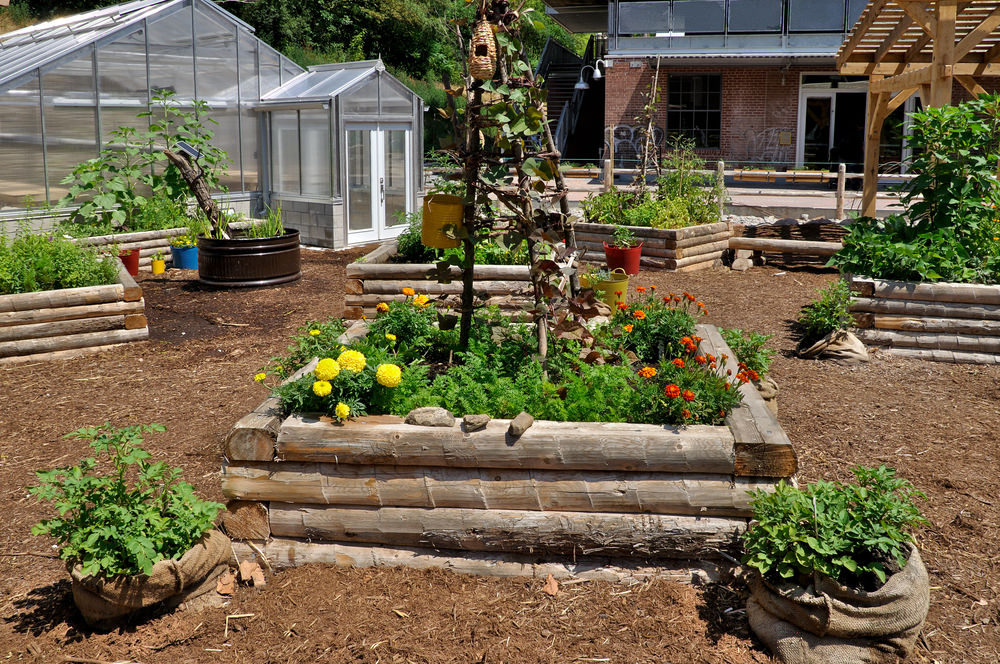 If you're looking to make a bolder statement, use larger pieces of timber to make a bigger garden.
