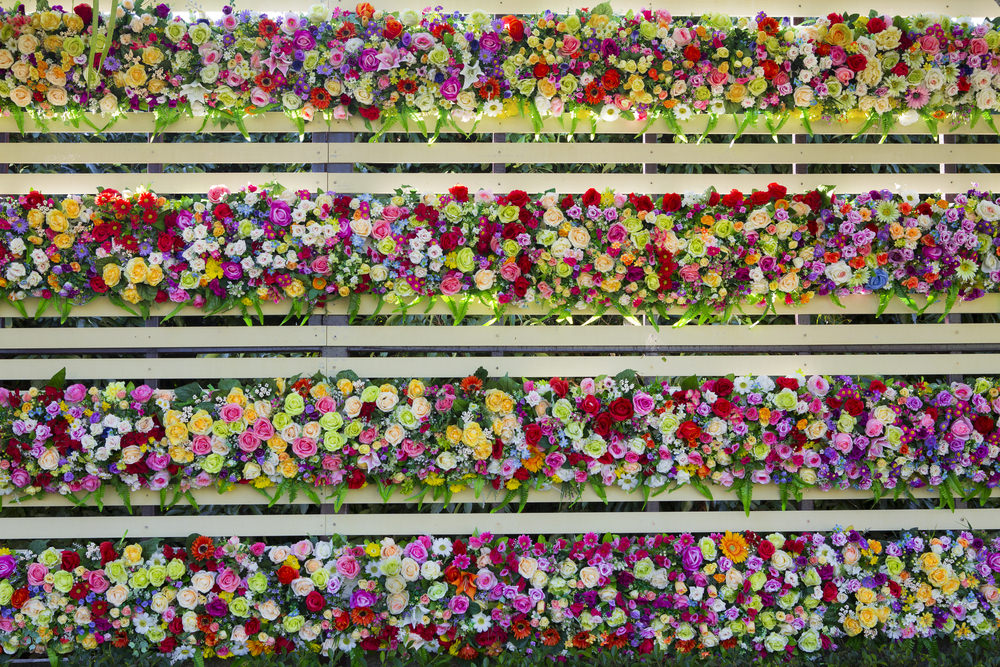 This is nothing but a bundle of colorful joy as these variations of colorful flowers painted the fence as an entire attraction.
